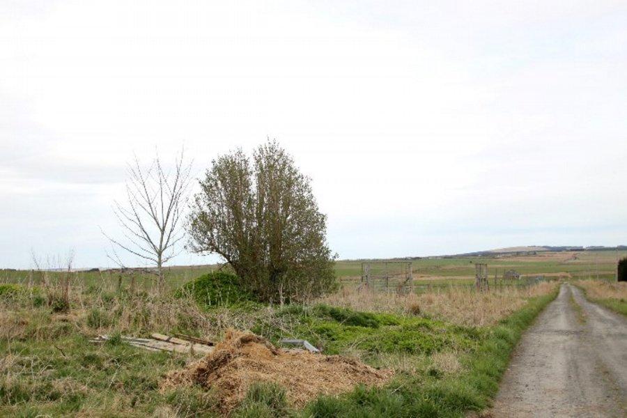 Appat Farm, Scotscalder,KW12 6XJ extra photo 20