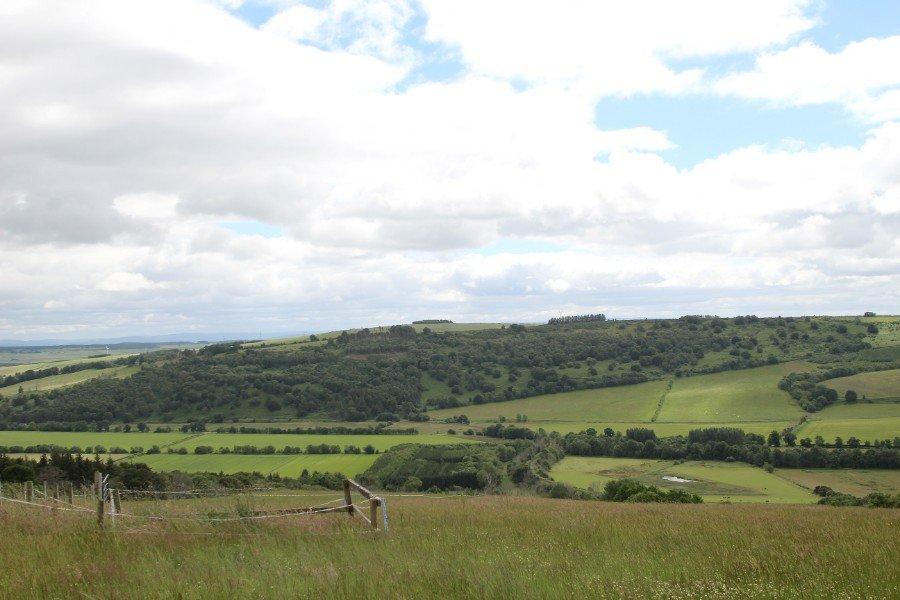 Braeside, Heights of Fodderty,IV14 9AF extra photo 21