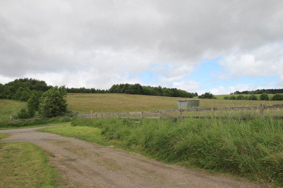 Braeside, Heights of Fodderty,IV14 9AF extra photo 22