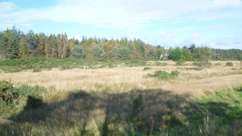 9 Development Plots Ballachraggan IV18 0NX