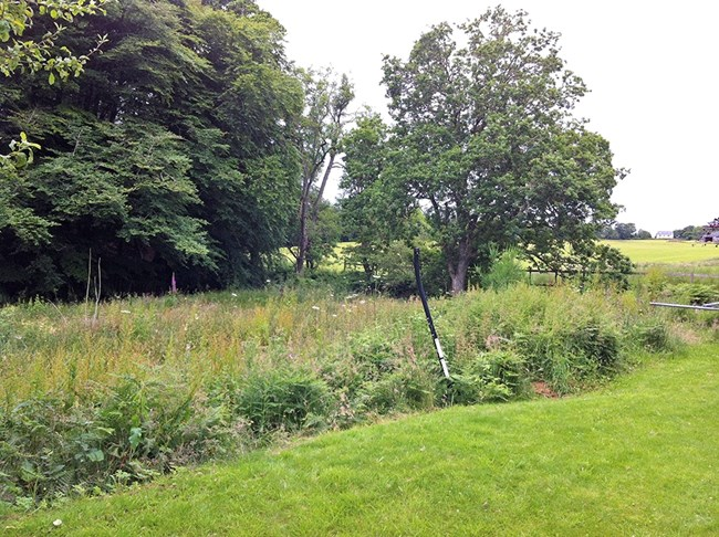 Plot of Ground, West of Orinsay Lodge, Munlochy IV8 8PB