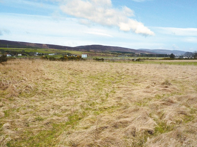 Plots at Dalchalm