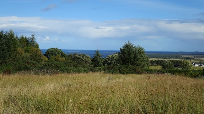 Plot at Viewfield Park, Tain IV19 1RJ