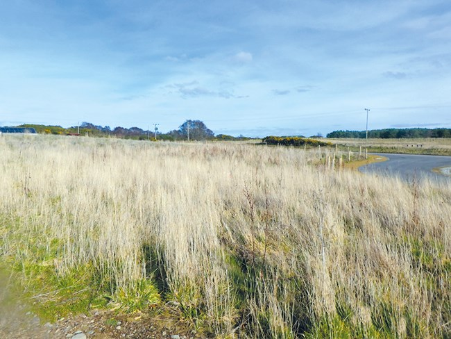 Plot at Achinchanter, Dornoch IV25 3PN