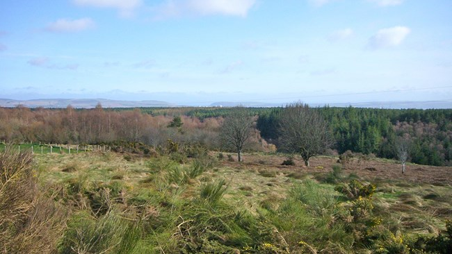 Plot 50m West of Torvaig, Lamington Invergordon IV18 0PE